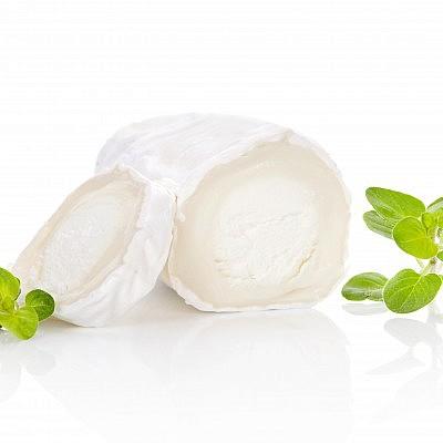 גבינת בוש עיזים