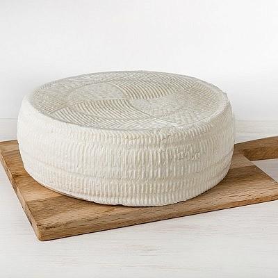 גבינת קדוש