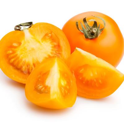 עגבניות כתומות