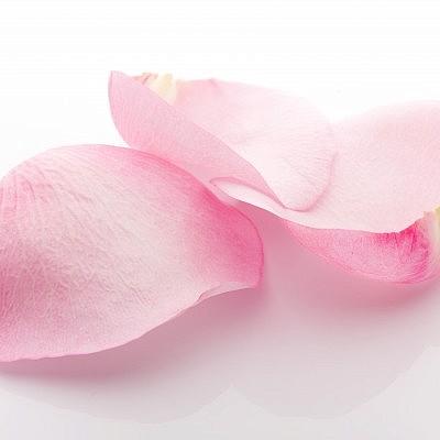 עלי ורדים