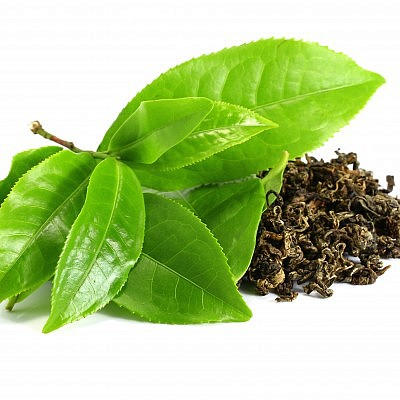 עלי תה ירוק