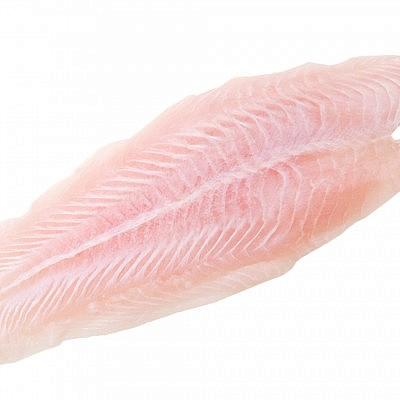פילה דג ים לבן