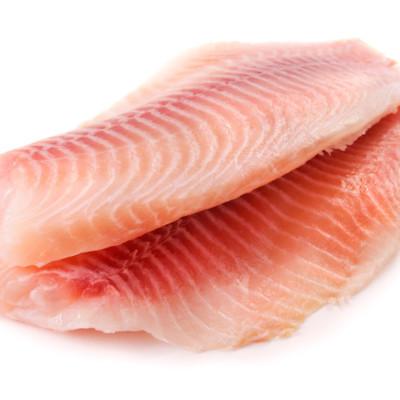 פילה דג ים