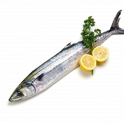 דג פלמידה