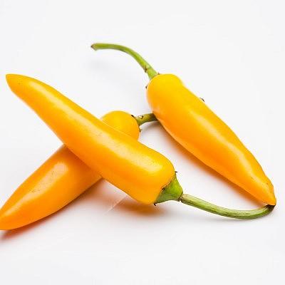 פלפל צ'ילי צהוב