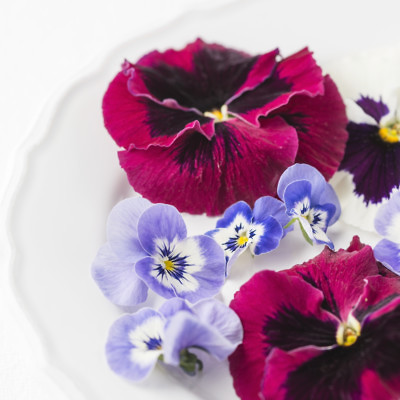 פרחי מאכל