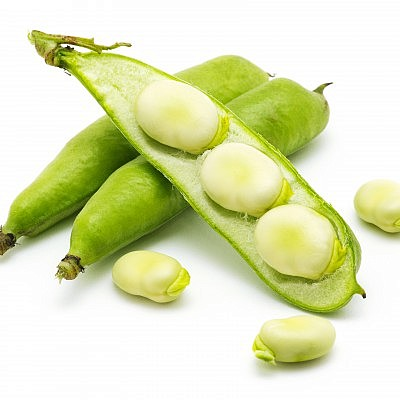 שעועית ירוקה רחבה