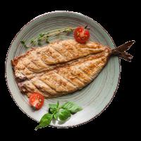 מסעדות דגים